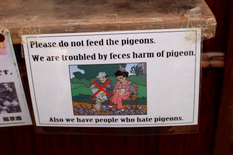 This pigeon sign...LAUGHED OUT LOUD.